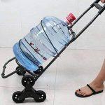 acheter chariot courses TOP 10 image 2 produit