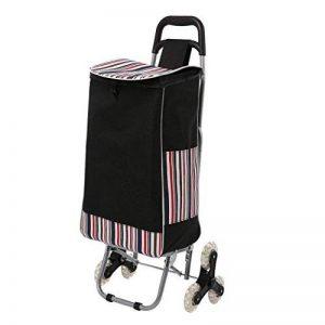 AIMADO Poussette de Marché Caddie, Chariot de Course Pliable à roulettes Imperméable - 6 Roues pour Monter- Capacité 30kg - Noir (EU Stock) de la marque AIMADO image 0 produit