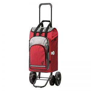Andersen, Chariot de courses Quattro Hydro rouge | volume 56L | 4 roues | poche isotherme | Made in Germany de la marque Andersen Shopper Manufaktur image 0 produit