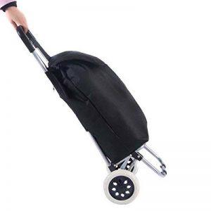 Blitzzauber24 Valise de Bagage Pliant Pliage Caddie Panier Sac à roulettes Roulant Utilitaire de la marque Blitzzauber24 image 0 produit