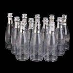 bouteille champagne plastique TOP 7 image 3 produit