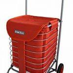 Chariot de courses pliable en métal 4 roues - BO TIME - Qualité fiable pour une longue durée – Capacité 37L de la marque Bo Time image 1 produit