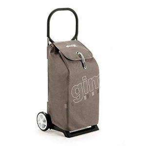 chariot de marche design TOP 7 image 0 produit