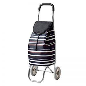Chariot pour Courses Pliable Acheter Un Panier De Nourriture Cadre en Alliage D'aluminium avec 2 Roues, Taille Pliante 36x15x68cm, 8 Couleurs (Couleur : 4#) de la marque QIANGDA-Chariot image 0 produit