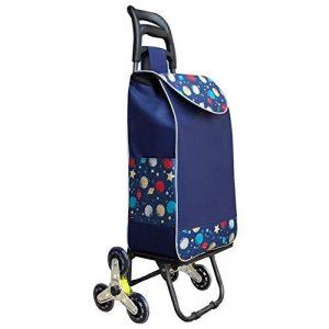 Chariot pour Courses Pliable Poids Léger Amovible Sac Lavable Monter des Escaliers Tissu Imperméable Roues en PU, 8 Couleurs (Couleur : # 6, Taille : 38 x 25 x 97cm) de la marque QIANGDA-Chariot image 0 produit