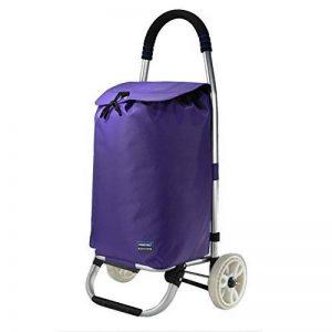 Chariot pour Courses Pliable Poids Léger Épaissir L'alliage D'aluminium Grande Capacité Sacs Oxford Supermarché, 32x38x91cm, 5 Couleurs (Couleur : Purple) de la marque QIANGDA-Chariot image 0 produit