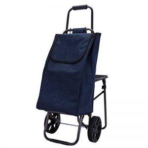 DCRYWRX Shopping Cart Portable Pliant Chariot Roues Doubles Escaliers Panier D'épicerie Imperméable À l'eau De Chariot De Supermarché,C de la marque DCRYWRX image 0 produit