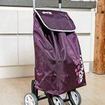 Gimi Twin Violet Poussette de marché de la marque Gimi image 1 produit