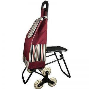 HCC& Chariot Dolly Achats Panier de courses Pliable Monter les escaliers Roue de charrette à bras de supermarché 6 Chariot utilitaire Voyage Provisions Avec siège de la marque HCC& image 0 produit