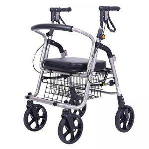 HCC& Panier Dolly De luxe Poids léger Personnes âgées Marcher et se reposer Chariot à bagages 360 ° Faire tourner les roues Grande capacité Panier de courses Pliant Portable Chaises roulantes de la marque HCC& image 0 produit