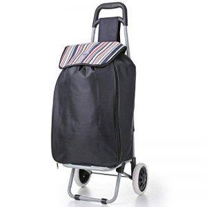 Hoppa 47litre pliage sac léger Shopping chariot sur roues (Noir ST90) de la marque Hoppa image 0 produit