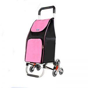 Le Caddie Portatif En Aluminium De Pliage,Chariot De Grande Capacité,Conception Spéciale De Pneu Est Commode Pour Monter Des Escaliers, Peut Porter Votre Enfant Peut S'adapter Aux Différentes Routes,REDA de la marque QINNIQ image 0 produit