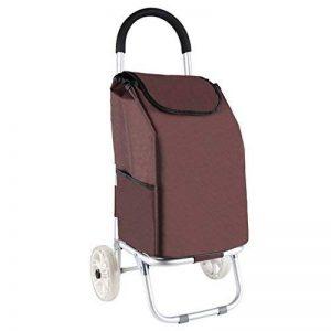 LINGZHIGAN Panier d'achat portable Acheter un chariot de voiture aux légumes Old man Small pull car Chariot pliable de la marque LINGZHIGAN image 0 produit