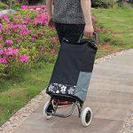 panier roulant pour courses TOP 11 image 2 produit