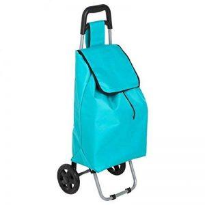 Paris Prix - Chariot De Marché Design 30l Bleu de la marque Paris Prix image 0 produit