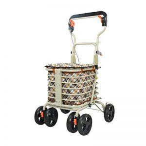 petit chariot pour faire les courses TOP 8 image 0 produit