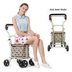petit chariot pour faire les courses TOP 8 image 1 produit
