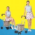 petit chariot pour faire les courses TOP 8 image 2 produit