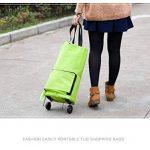 Portable Pliable Sac à provisions et à roulettes chariot tirer Package Shopping Sac de voyage réutilisable Vert Sac de shopping de la marque Acycee image 1 produit