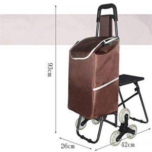 RKY Grimpez les escaliers escamotables avec la chaise Panier d'achats Le chariot de voiture de levier de chariot de caddie âgé Chariot multifonction (Couleur : 7) de la marque RY Chariot image 0 produit