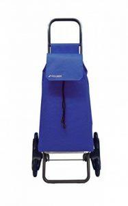 Rolser SAQ006 Chariot de courses monte-escalier à 6 roues avec housse en nylon Bleu de la marque Rolser image 0 produit