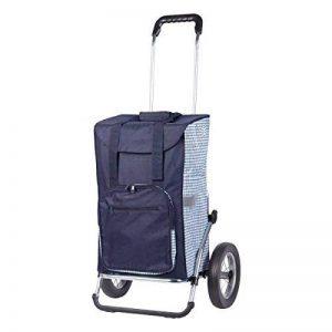 sac cabas pour caddie TOP 1 image 0 produit