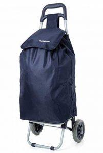 sac cabas pour caddie TOP 6 image 0 produit