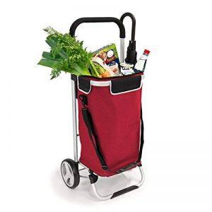 sac chariot pour courses TOP 12 image 0 produit