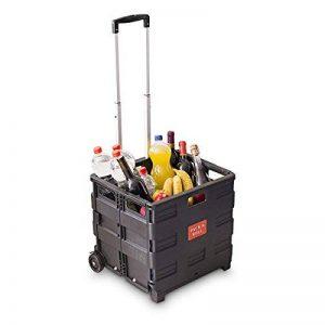 sac chariot pour courses TOP 2 image 0 produit