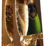 Taunus 99-3005 Lot de 10 sacs cadeaux pour bouteille (Motifs vin) (Import Allemagne) de la marque Taunus Grußkarten image 2 produit