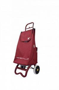 travelhouse Shopping Cart - Chariot de supermarché - einkauftstrolley - Cabas, Ordinaire, cadre aluminium, Volume 57 litre, einkaufswagen-anhänger de la marque TRAVELHOUSE image 0 produit