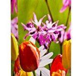 TSI 84293 Lot de 12 sacs cadeau pour bouteille, 6 motifs florals, format 33 x 10 x 9 cm de la marque TSI image 1 produit