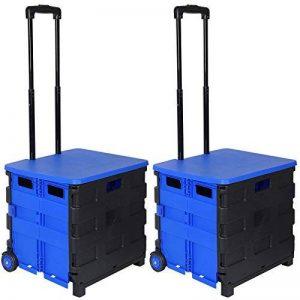 WOLTU EW4802bl-2 2 x Chariot de supermarché,Caddy de Courses Pliant,Chariots Pliable Poids de roulement 35kg Caddies Noir Bleu de la marque WOLTU image 0 produit