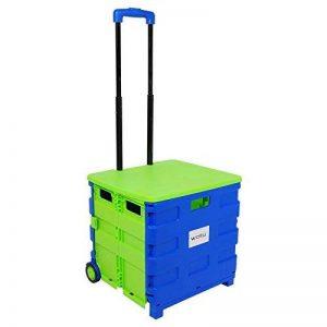 WOLTU EW4806gn-c Chariot supermarché Pliante avec Couvercle Transporter jusqu'à 35 kg,Chariots de Courses,Caddie pour Les Courses,Bleu Vert de la marque WOLTU image 0 produit