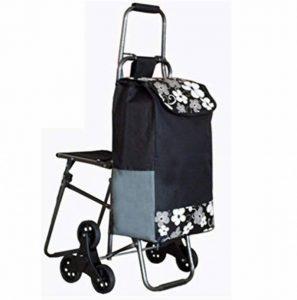 XIARI Chariot de transport léger à 6 roues pliable avec siège, b de la marque XIARI image 0 produit